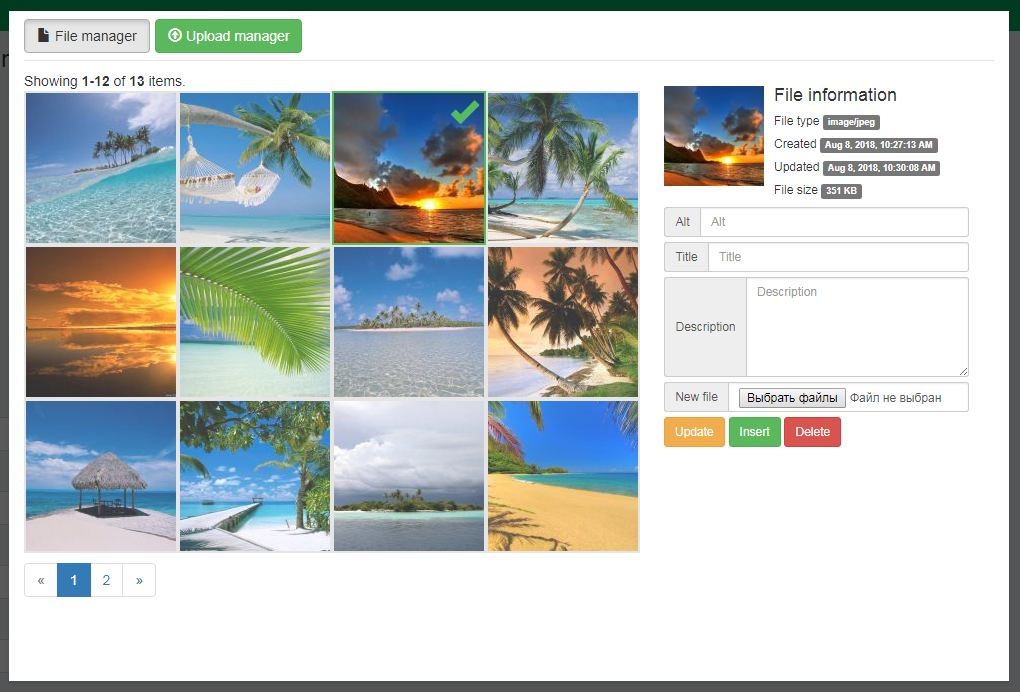File manager of the multi format uploader with pictures